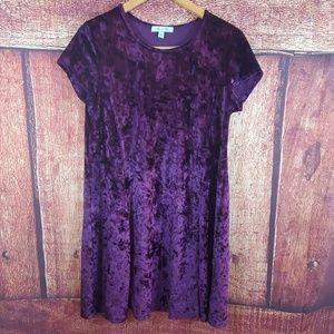 She and Sky purple velvet dress
